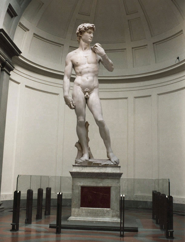 Michelangelo's David is the perfect example to everything that the Renaissance stood for. There are no images that can do justice to this sculpture. The details, the physique, the eyes. Everything about it evoques so many emotions in a human being. Shows us the importance of MEN, and the need to strive for perfection.